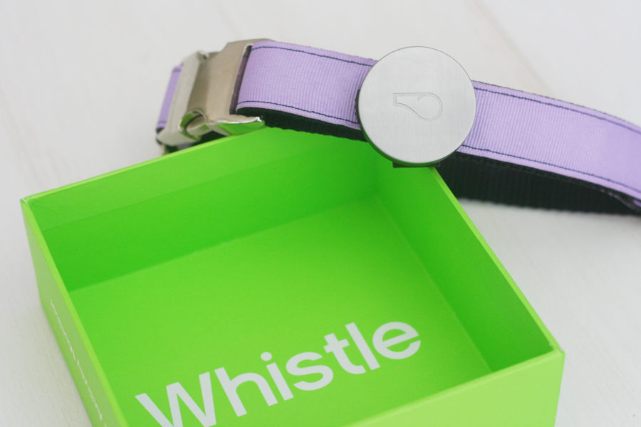 Whistle Activity Monitor - Fit Bit for Dogs