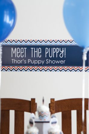 Puppy Shower Ideas - the best way to welcome a new furry member of the family