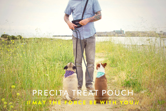 Wildebeest Precita Treat Pouch