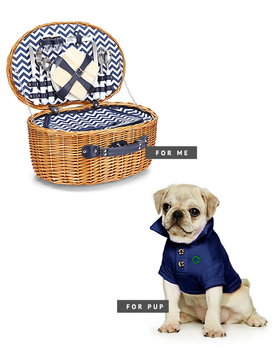 C.Wonder Chevron Picnic Bsket and Dog Cotton Polo Shirt