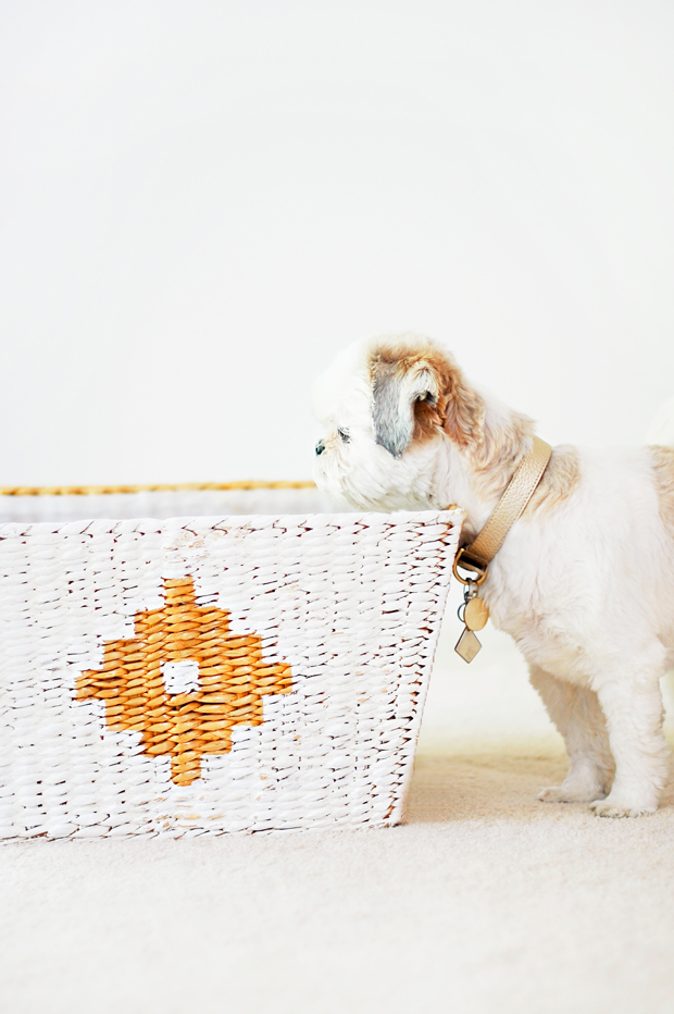 Coco-Beans-Doggy-Revamped-Toy-Bin