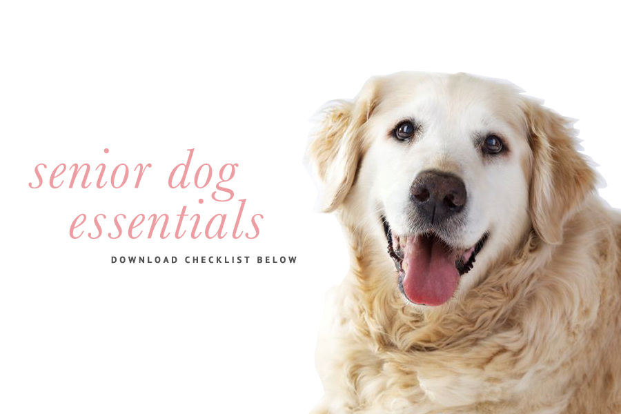 Pretty fluffy senior dog checklist everything you need for an older dog fandeluxe PDF