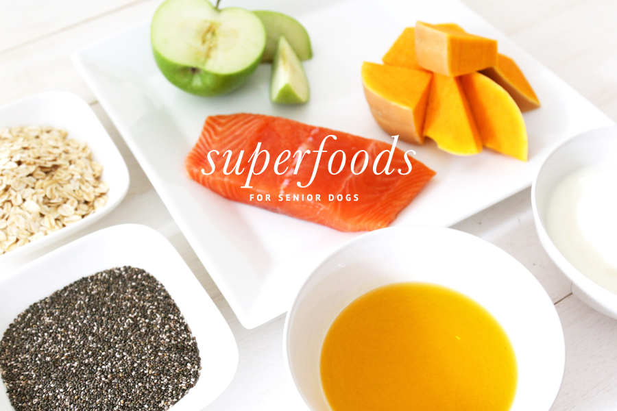 Superfoods for Senior Dogs www.prettyfluffy.com