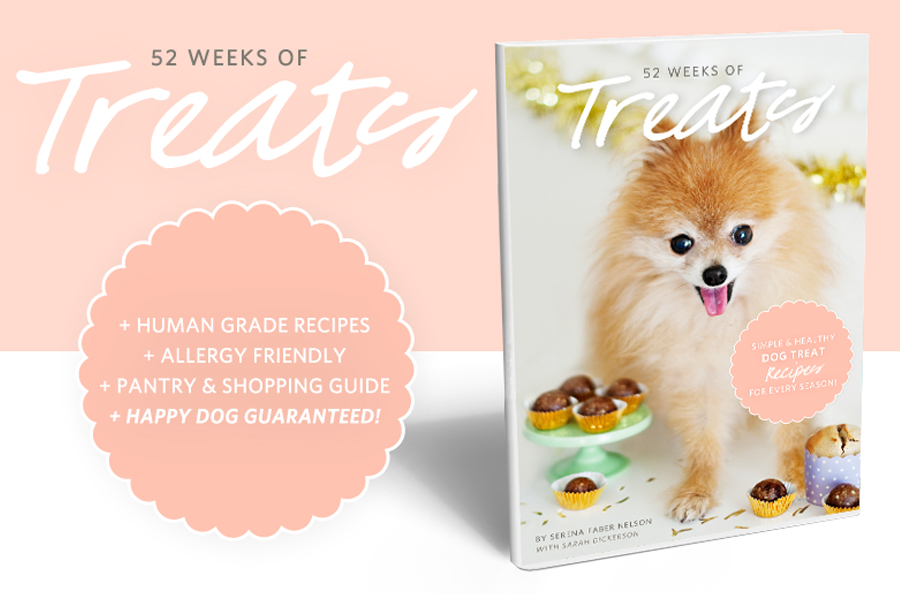 52 Weeks of Treats 2nd Edition - Dog Treat eBook // Available at the Pretty Fluffy Print Shop // www.prettyfluffy.com
