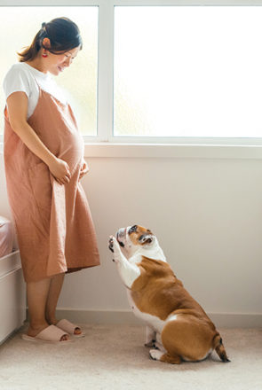 How-to-Prepare-your-Dog-for-a-Baby