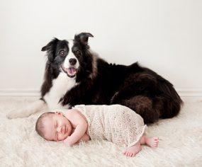Top Tips for including your pet in your Newborn Photography Session - everything you need to know to get the perfect family photos! Photography by Seed Photography | www.prettyfluffy.com