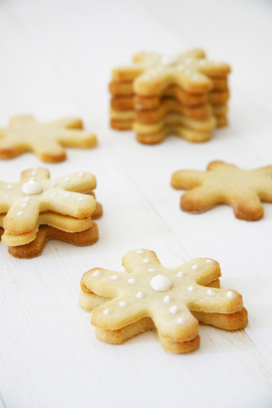 5 Easy Christmas Dog Treat Recipes | www.prettyfluffy.com