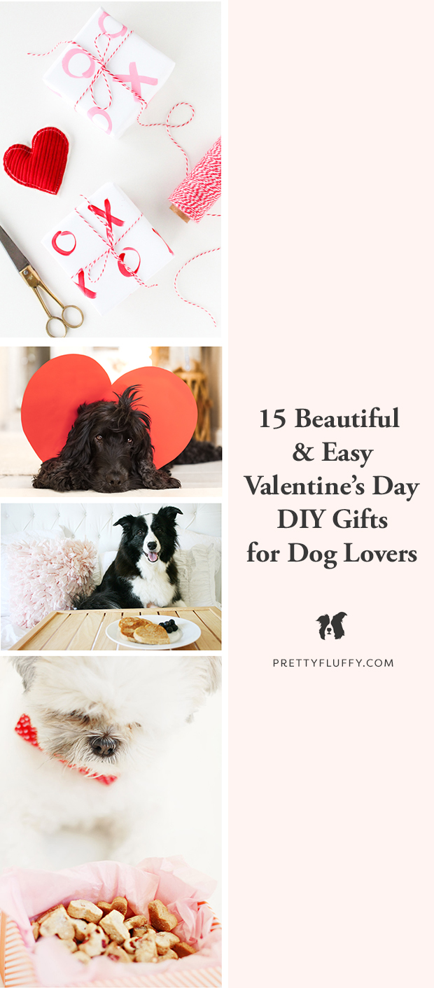 Cocker Spaniel dog with Valentine's heart and DIY gifts for dog lovers