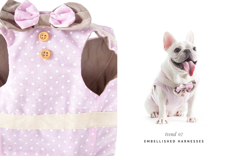 The Hottest Pet Trends for 2015 - Embellished Harnesses