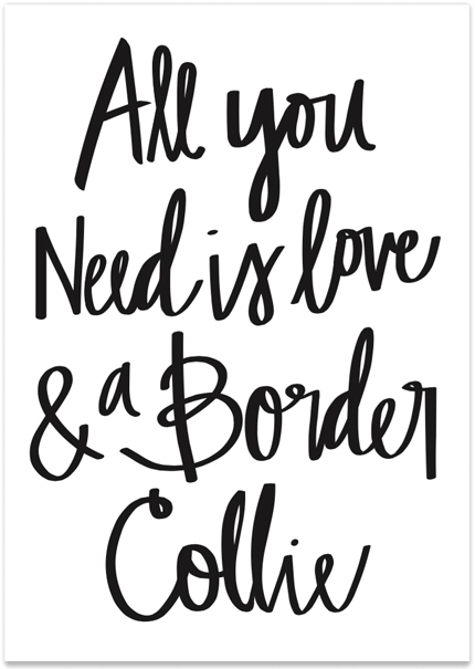All You Need is Love & a Border Collie Print // Available at the Pretty Fluffy Print Shop // www.prettyfluffy.com