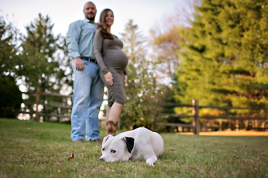 Dog Friendly Maternity Session by April Ziegler Photography