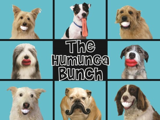 Humunga Dog Toys at DogTired