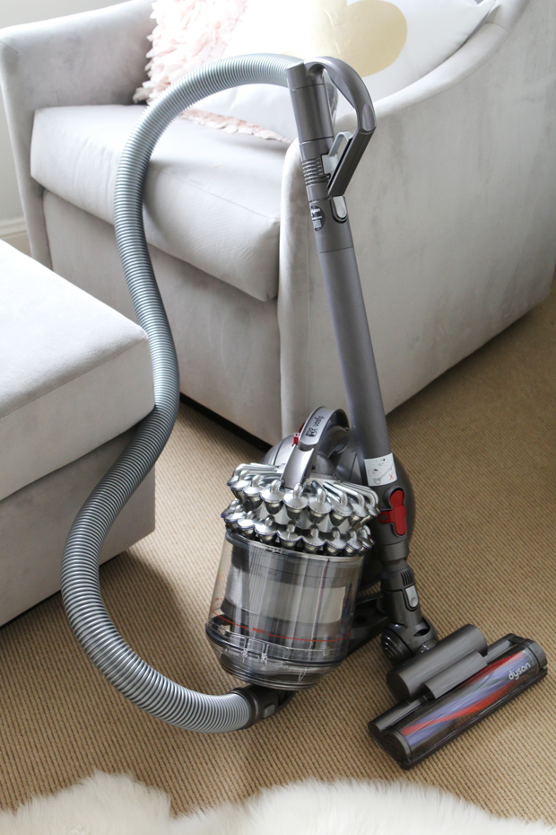 Review: Dyson Animal Pro Vacuum Cleaner