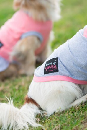 A sneak peek behind the scenes with pet brand, Haus of Harley and how they became the go-to online destination for stylish pet products.