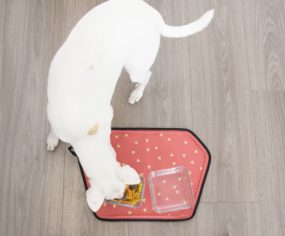 Shop It: Wildebeest Geode Pet Food Mat