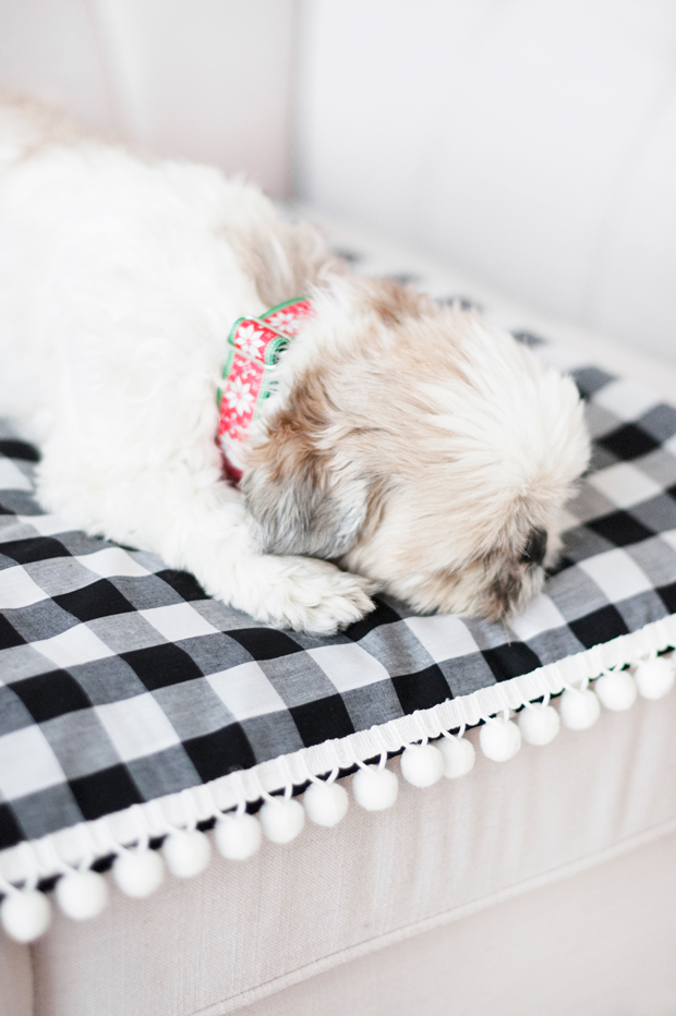 Make you're own NO-SEW dog blanket - follow our quick AND easy tutorial to make your own dog travel blanket - for at home and away. No sewing required!