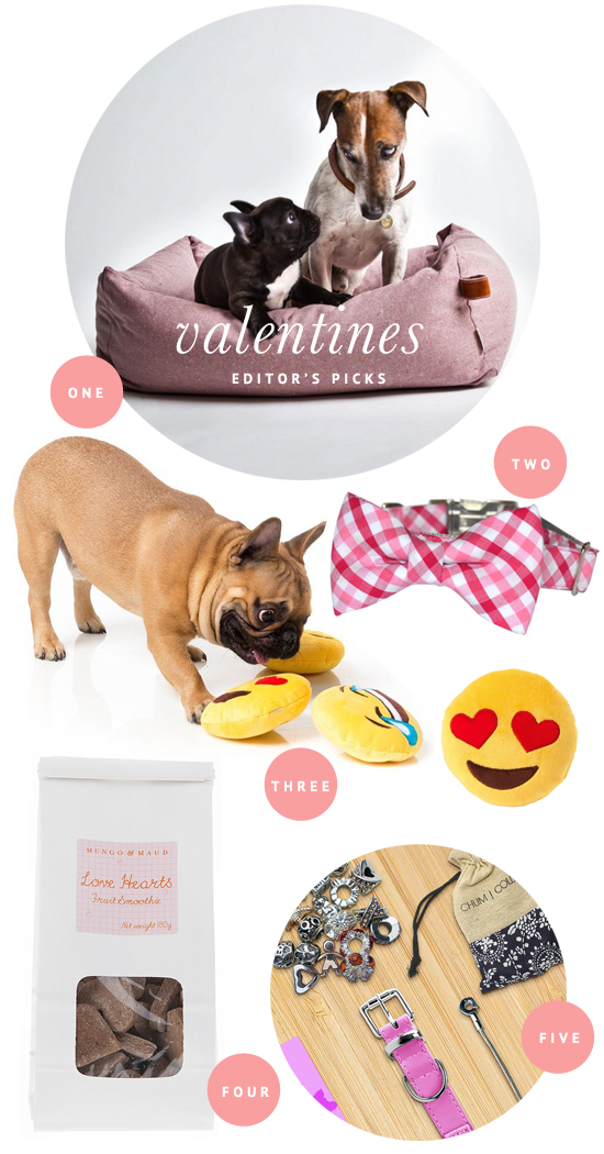 Valentines Day for Dog Lovers