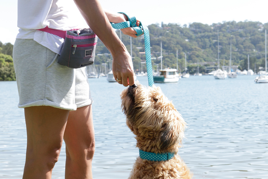 A look behind the scenes with lifestyle pet brand, DOOG and how they became one of the world's leading brands for outdoor and active gear for dog owners.