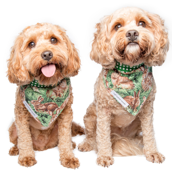 On Trend Dog Bandanas by The Dapper Yapper