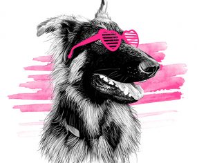 On Fleek Pet Portraits by Incandescent Design
