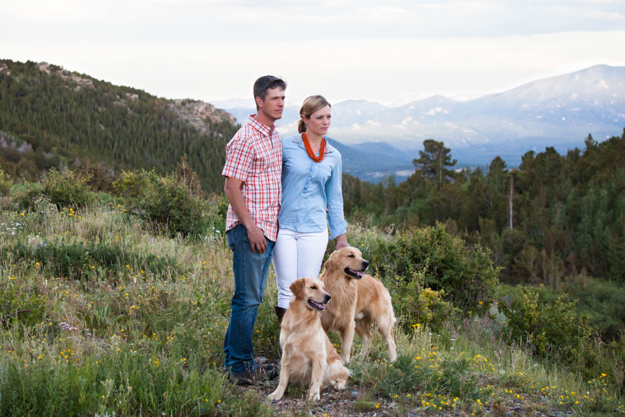 Golden Retrievers in the Rockies by Allison Mae Photography