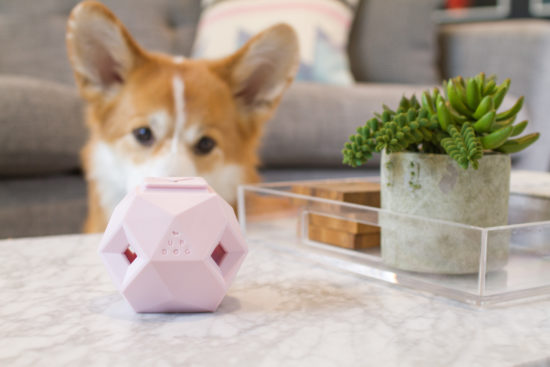 The Odin Dog Toy. The genius treat dispensing toy that looks at home in any stylish abode - now in Rose Quartz! See the full review here.