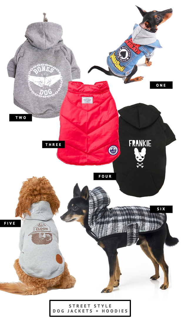 The best dog jackets for every shape and size of dog. Includes denim dog jackets, puffer vests, personalised coats and dog hoodies - plus where to buy.