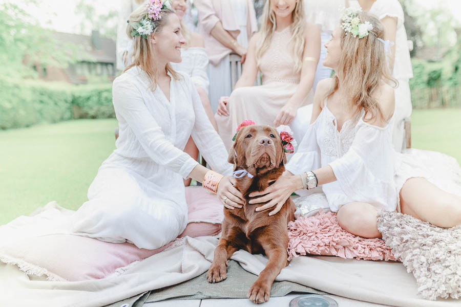 Dog Friendly Wedding Inspiration Styling Tips And From Experts On How To Have