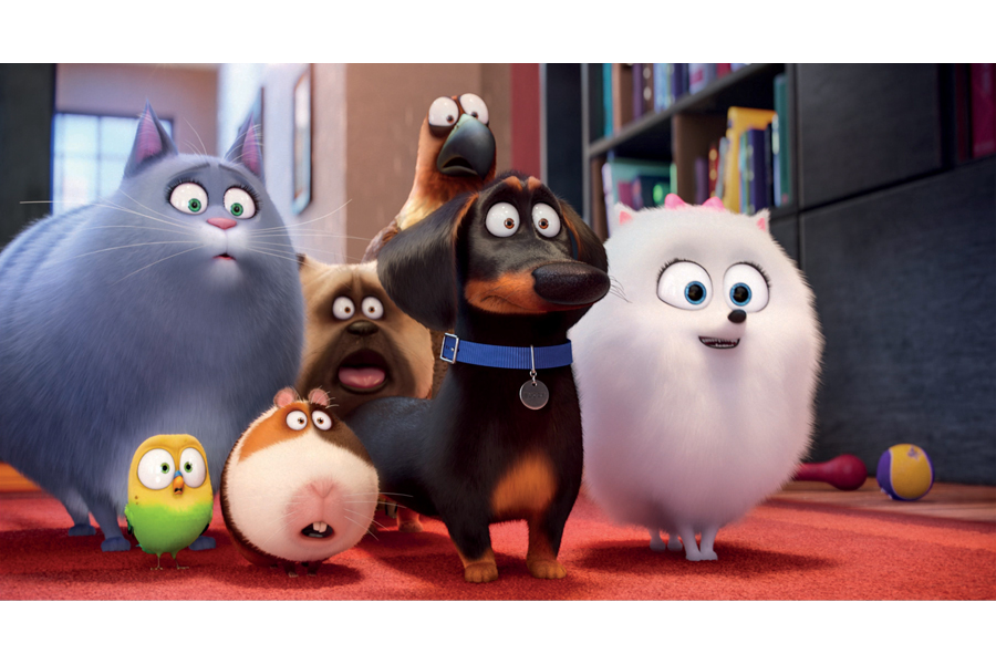 The Secret Life of Pets - WIN Movie Passes & Prize Packs