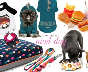 The ultimate holiday gift guide for dogs - the best stocking stuffers, dog treats, toys and accessories to pamper your pet this holiday season.