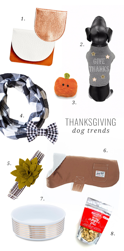 Give thanks to the furry friends in your life, with our top gift picks, tips and tricks for a happy and safe Thanksgiving for dogs.
