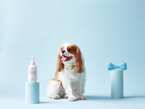 The gentle Mr PAW dog shampoo 2-in-1 formula combines a blend of essential oils that clean & condition, leaving your dog's coat soft and shiny - no nasties!