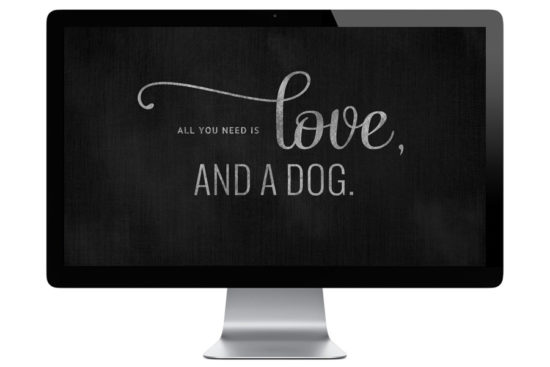 FREE dog lovers wallpapers - dog desktop wallpapers for all desktop sizes and iPhones. Includes 'All You Need is Love & a Dog' wallpaper, 'Dogs are a Girl's Best Friend' wallpaper and more! Download for FREE here.