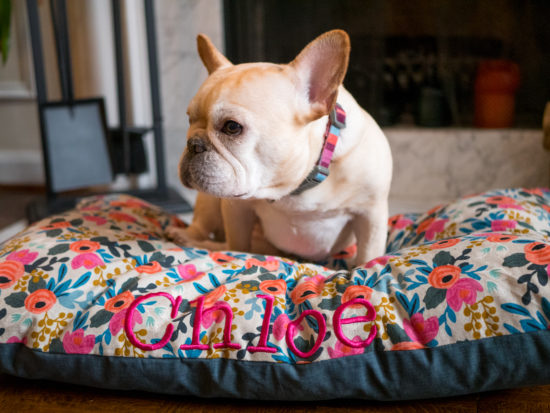 The limited edition Rifle Paper Co. dog bed collection, exclusively available at The Foggy Dog, includes 3 beds featuring stunning Rifle Paper Co fabric.
