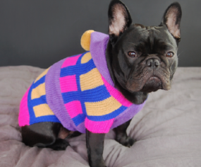 NY label Bau Hound features pom pom dog sweaters and on trend bandanas with cute neon hues, fashion forward patterns- made from alpaca wool and 100% cotton.