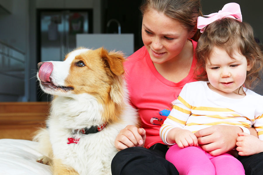 Feeling more loved, happier, allergy free, learning responsibility & more. Learn about the top benefits of dogs for kids and how your family can get them.