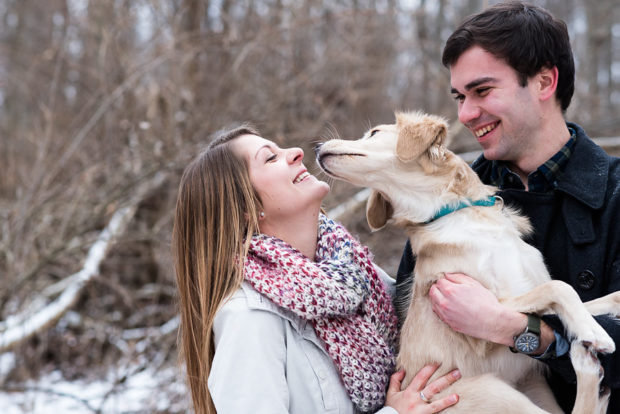 Want to include your dog in your engagement photos? Read our tips on how to make your dog friendly engagement session a success!