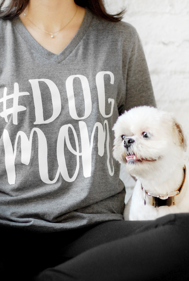 7.00pm Whip up a nutritious grain free, superfood dinner for my dog. Speed dial a pizza for me. This dog mom diary will have you in stitches! Read it here.