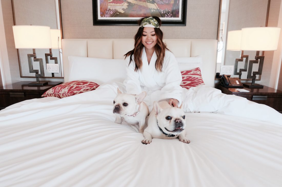 Dog Friendly Los Angeles City Guide: Where to stay, play, and dine when you're visiting LA with your dog.