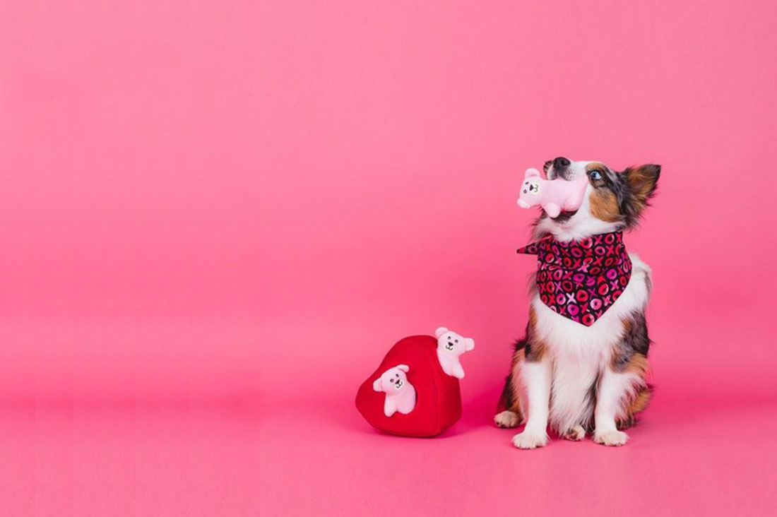 Dog Valentine Toys : Pretty fluffy