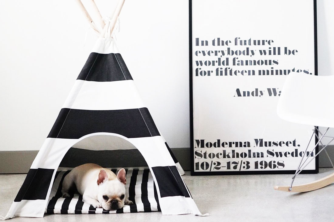 Black and White Dog Teepee. See our favourite monochrome dog accessories right now - monochrome dog collars, monochrome dog beds, monochrome dog harnesses, bowls and more all in classic black and white.