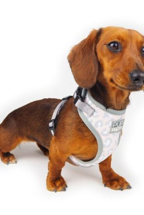 Our favourite dog harness picks for dogs of all shapes and sizes - personalised harnesses, adjustable, no-pull, reversible harnesses and more - all comfortable, stylish and doggo approved.