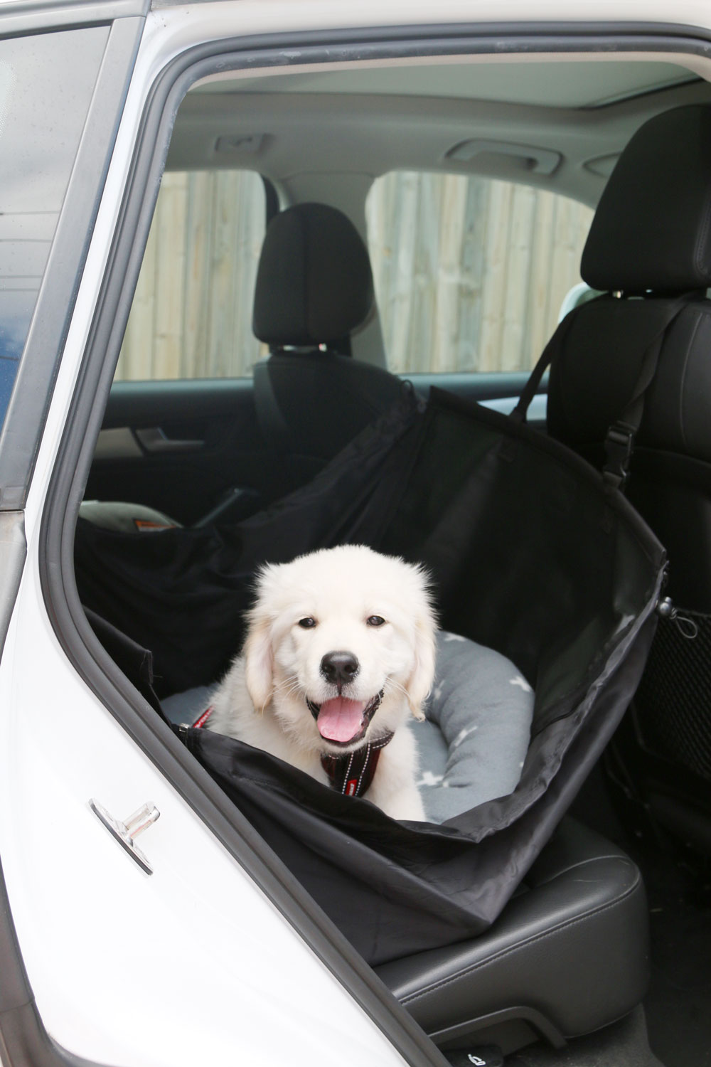 Keep your puppy safe and comfortable on a car trip with these 7 essentials for pet car travel. Budget friendly and practical, these must have items will give your puppy (and you!) the perfect trip home.