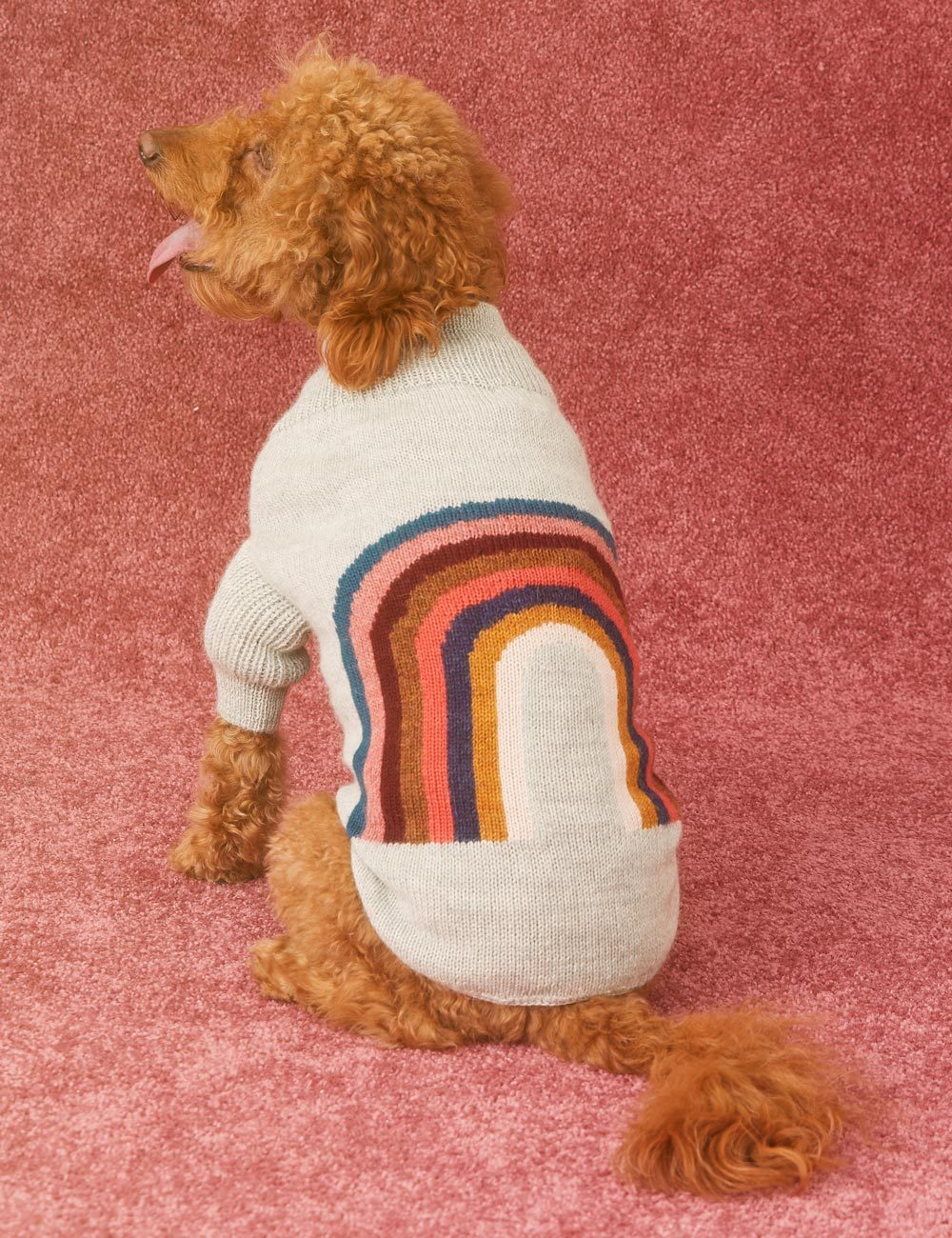 Our favourite luxury dog accessories of 2018 - featuring all the hottest pet trends we're loving right now, female owned brands, and fair trade products.
