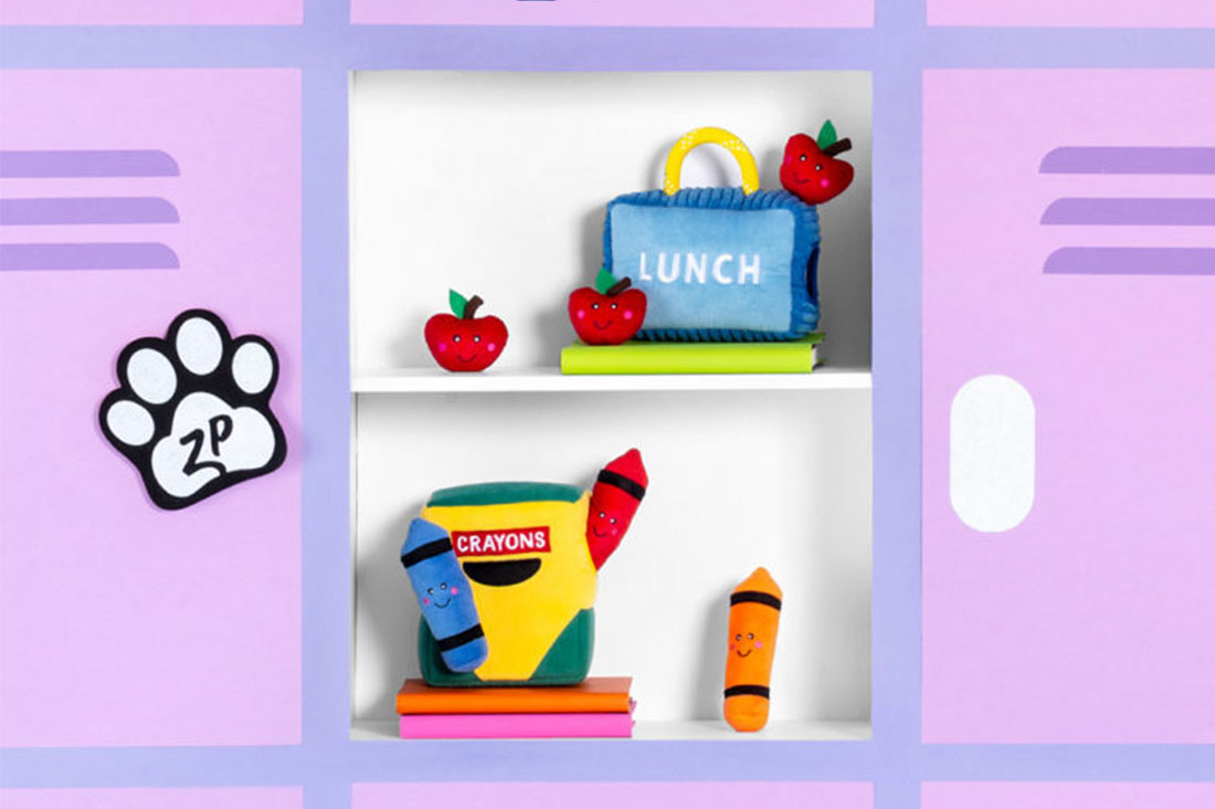 Back to school dog toys and accessories - our favourite picks!