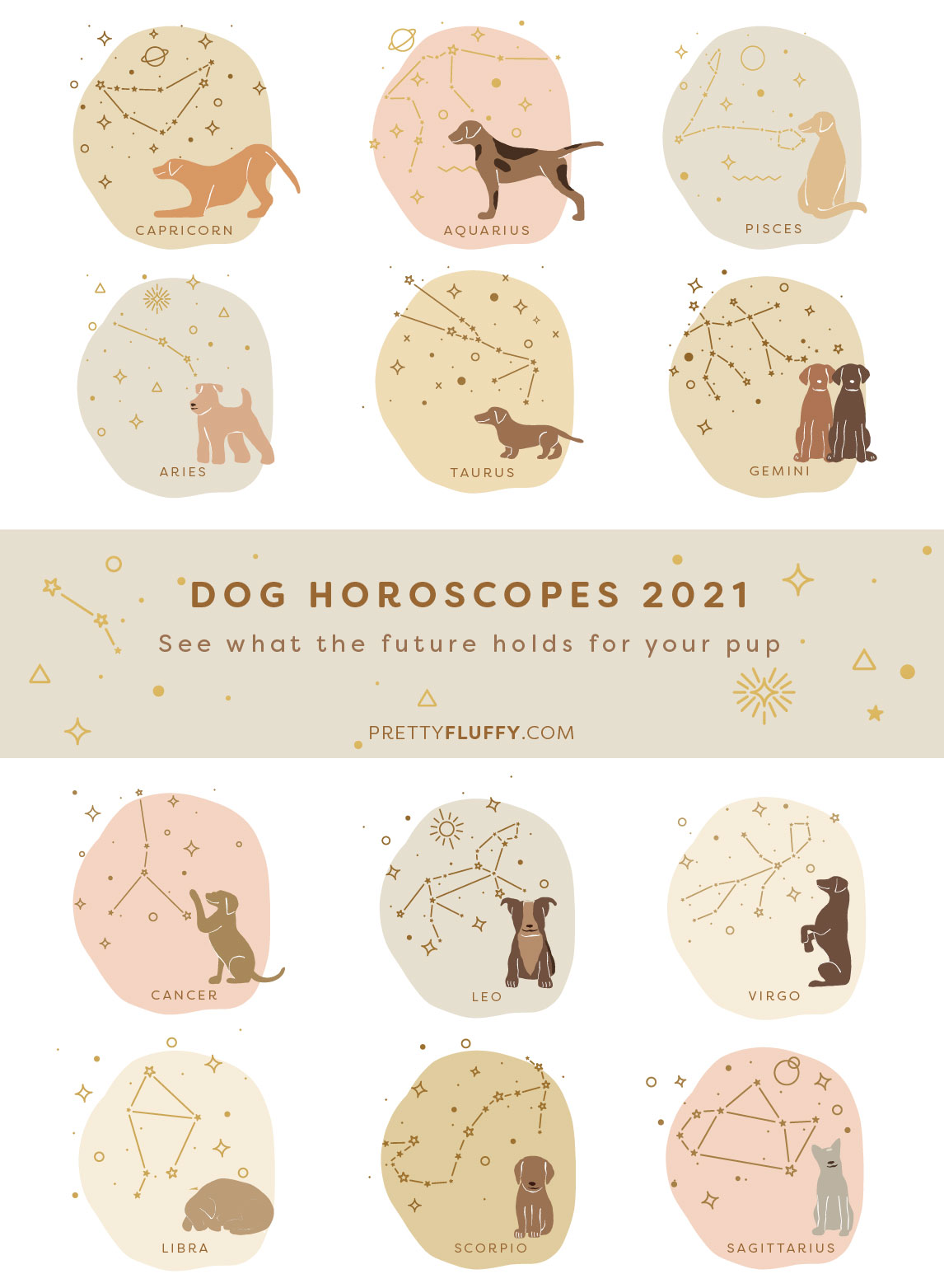 Dog Horoscopes 2021_See what the future holds for your pup_Pretty Fluffy