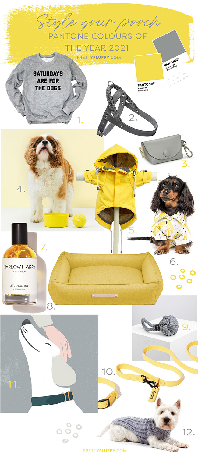 Style your pooch_Pantone Colours_Pretty Fluffy