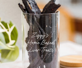 DIY Home Baked Liver Treats for your Dog