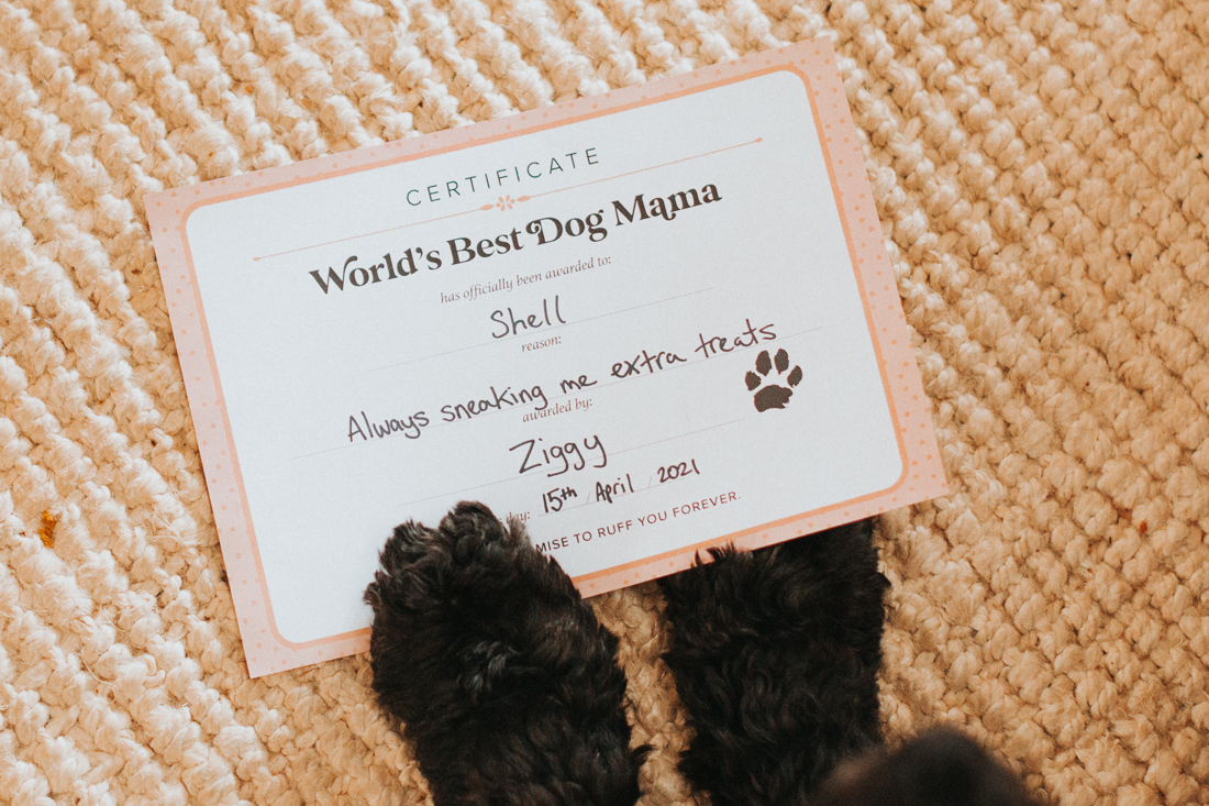 Fluffy dog paw on World's Best Dog Mama Certificate by Pretty Fluffy
