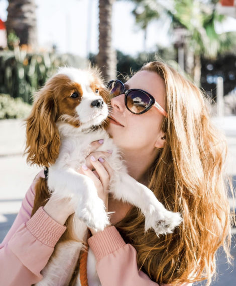 @henrythesmol - Cavalier and dog mom - Pretty Fluffy